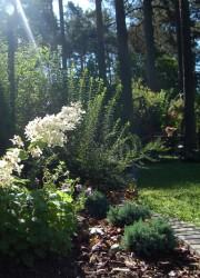 Kivitom aiakujundus